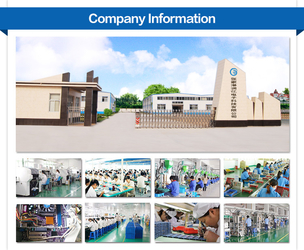 Zhangjiagang RY Electronic CO.,LTD