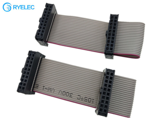 2*10pin IDC To 20pin Idc2.54 Pitch Female Flat Flex Ribbon Cable With Machine Strain Relief supplier